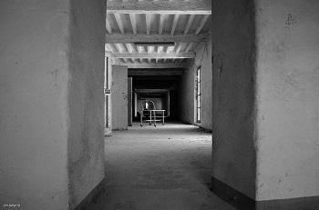 EX manicomio e Palazzo Ducale